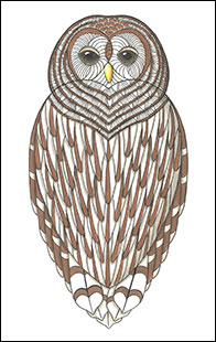 I Heart Barred Owls by Kim Russell