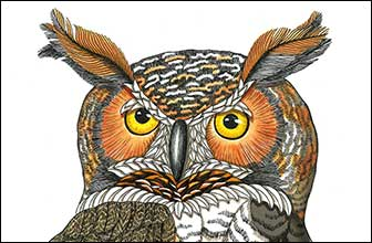 Renaissance Man by Kim Russell | Great Horned Owl | Birds In Art