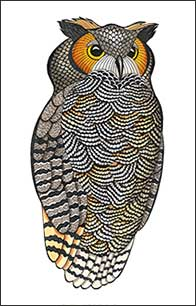 Snaz by Kim Russell | Great Horned Owl