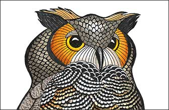 Snaz Detail by Kim Russell | Great Horned Owl | Birds In Art