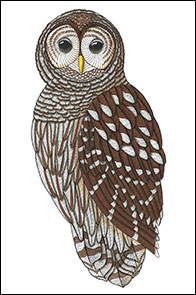 Soul Man by Kim Russell | Barred Owl | Birds In Art
