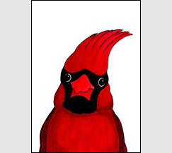 Uncle Al by Kim Russell | Cardinal Portrait