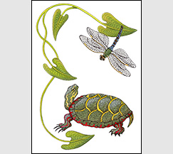 Encounter by Kim Russell | Painted Turtle and Dragonfly
