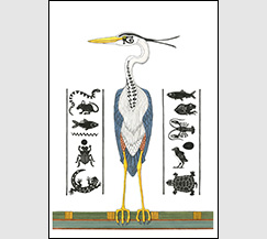 Heron Hieroglyphs by Kim Russell | Great Blue Heron