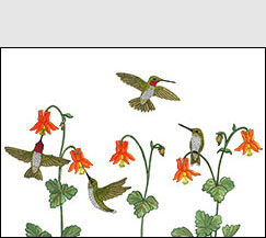 Among the Columbine by Kim Russell | Hummingbirds