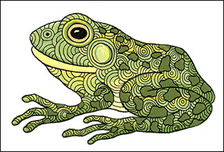 Bull Frog | Kim Russell | In Her Domain II