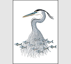 In Harmony by Kim Russell | Great Blue Heron and Herring